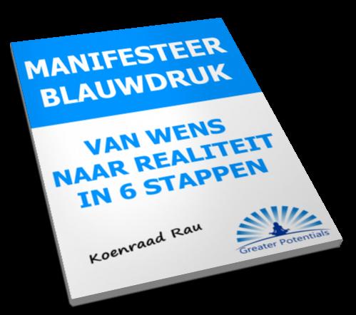 De Manifesteer Blauwdruk - Koenraad Rau